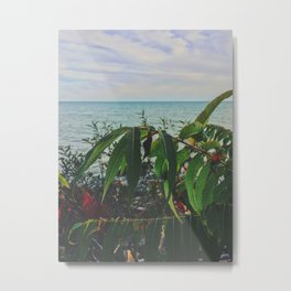 Glimpse of the lake Metal Print