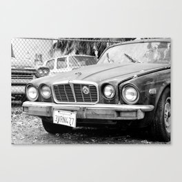 Jagged Edge Canvas Print