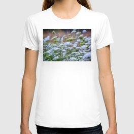 Wild Carrots T-shirt