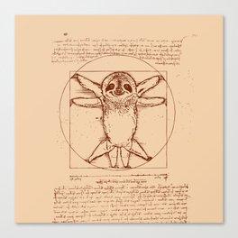Vitruvian Sloth Canvas Print