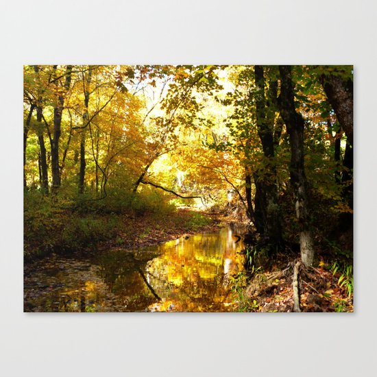 Fall afternoon II Canvas Print