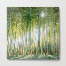 Japanese Bamboo Forest Fine Art Print Metal Print