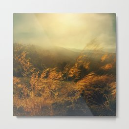 Morning Breeze Metal Print