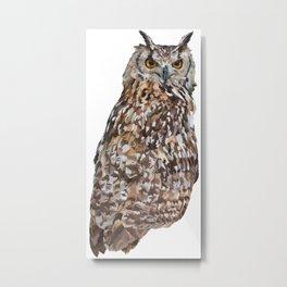 Sedona Owl Metal Print
