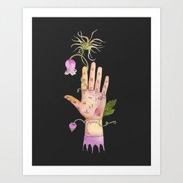 Clematis Art Print