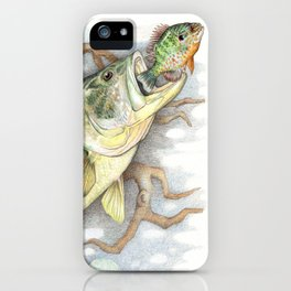 Bass and Pumpkin Seed iPhone Case