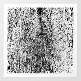tree crotch in black and white Art Print