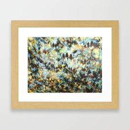"""Rondo"" oil painting of birds in abstract trees and sky Framed Art Print"