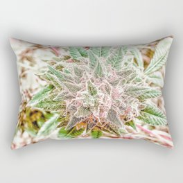 Flower Star Blooming Bud Indoor Hydro Grow Room Top Shelf Rectangular Pillow