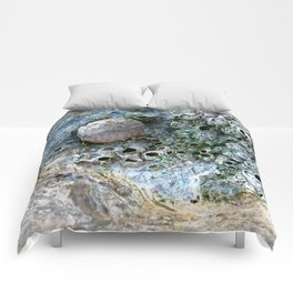 Nacre rock with sea snail Comforters