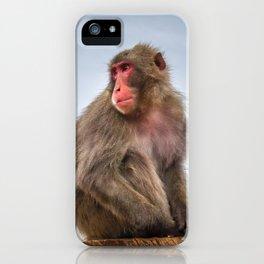 Japanese macaque on a trunk, Iwatayama monkey park, Kyoto, Japan iPhone Case