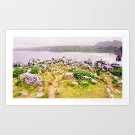Cape Hedo Art Print