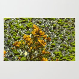 Mylor Creek - Gorse Bush Rug