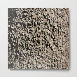 TEXTURES -- Western Sycamore Bark Metal Print