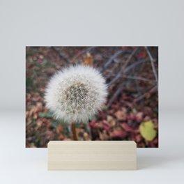 Make Wishes Mini Art Print