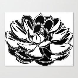 Simple Monochrome Succ Canvas Print