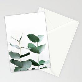Eucalyptus 5 Stationery Cards