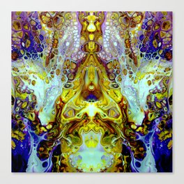 mirror 11 Canvas Print