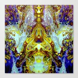 mirror 11 Canvas Print