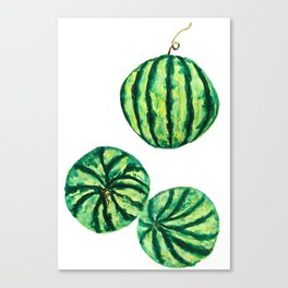 3 watermelon watercolor Canvas Print