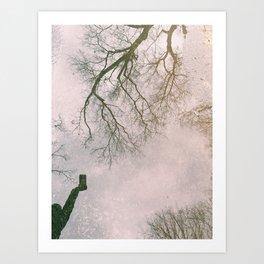 Reflective Reflection Art Print
