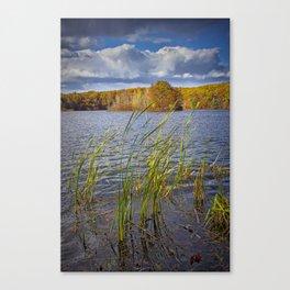 Hall Lake in Autumn Canvas Print