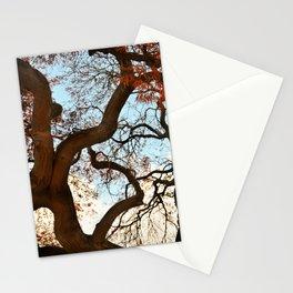 Purple Japanese Maple Stationery Cards