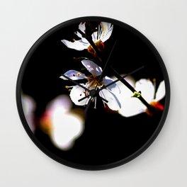 Beautiful Sunlit Japanese Apricot Flowers On Black Wall Clock