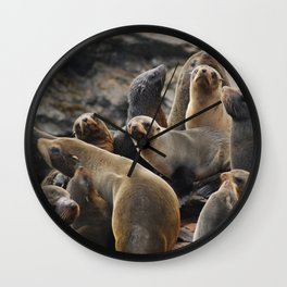 Sea lion party Wall Clock