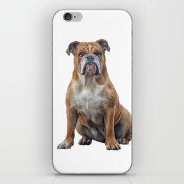 Drawing dog breed English Bulldog iPhone Skin