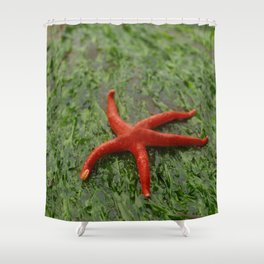 Blood Seastar On Green Seaweed Shower Curtain