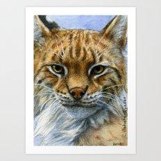 Lynx 809 Art Print