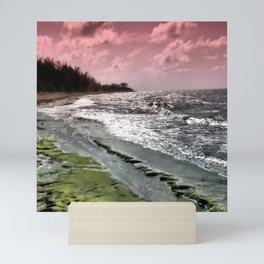 Slippery Beach Wonder Mini Art Print
