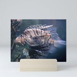 sea fish Mini Art Print