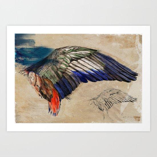 L'AILE DE DURER (DURER'S WING) Art Print