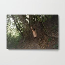 Camouflaged Animals Metal Print