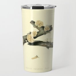 Naturalist Fungi and Lichen Travel Mug