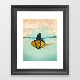 Brilliant DISGUISE - Goldfish with a Shark Fin Framed Art Print