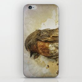 A little dead bird iPhone Skin