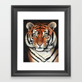 Tiger portrait drawing Framed Art Print