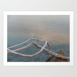 Driftwood Dawn, Florida Art Print