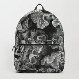 Ernst Haeckel Vintage Sea Coral Print Backpack