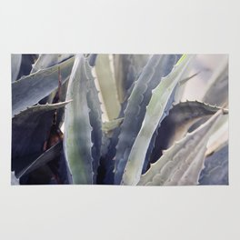 Winter Agave Rug