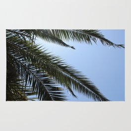 Santa Barbara Palms Rug