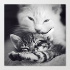 Cats Love Canvas Print