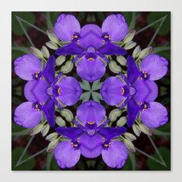 Summer blue mandala - Spiderwort (Tradescantia) 9146 k14 Canvas Print