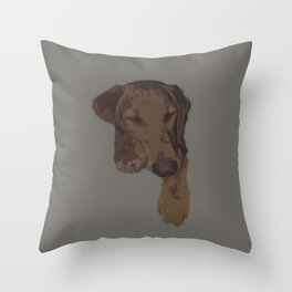 Sleepy Lab Throw Pillow