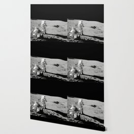 Apollo 14 - Black & White Moon Work Wallpaper