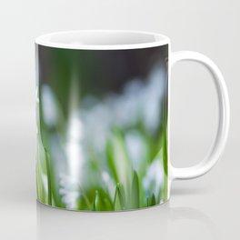 Squill Flowers Coffee Mug
