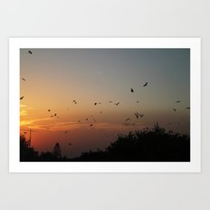 migrating birds Art Print